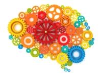 Brain in cogs